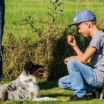 Kurs mit Hund und Kind